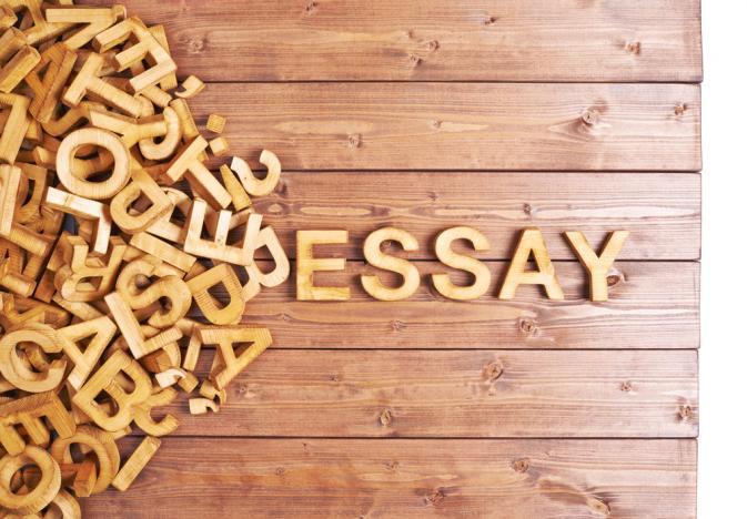 Essay Classroom Programme